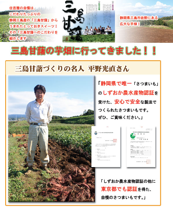 三島甘藷畑に行ってきました!